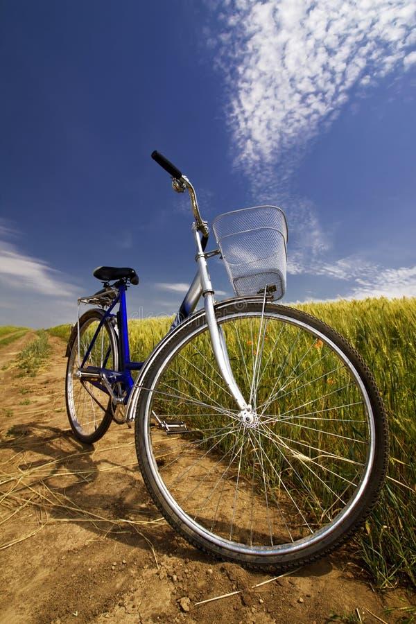 Bicyclette sur le bord de la route rural de route photos libres de droits