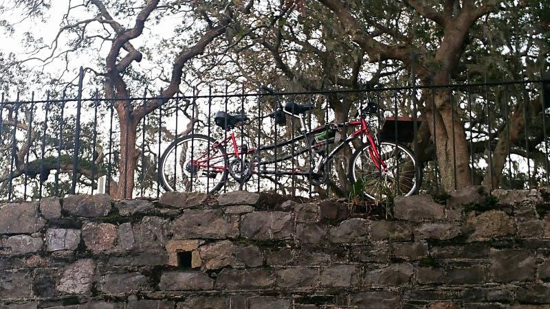 Bicyclette tandem photos libres de droits
