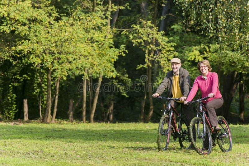 Bicyclettes aînées d'équitation de couples photo libre de droits