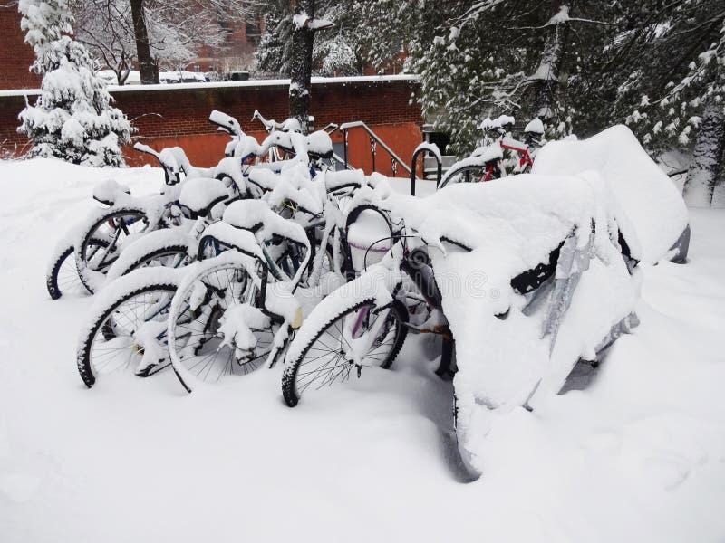 Bicyclettes congelées photo stock