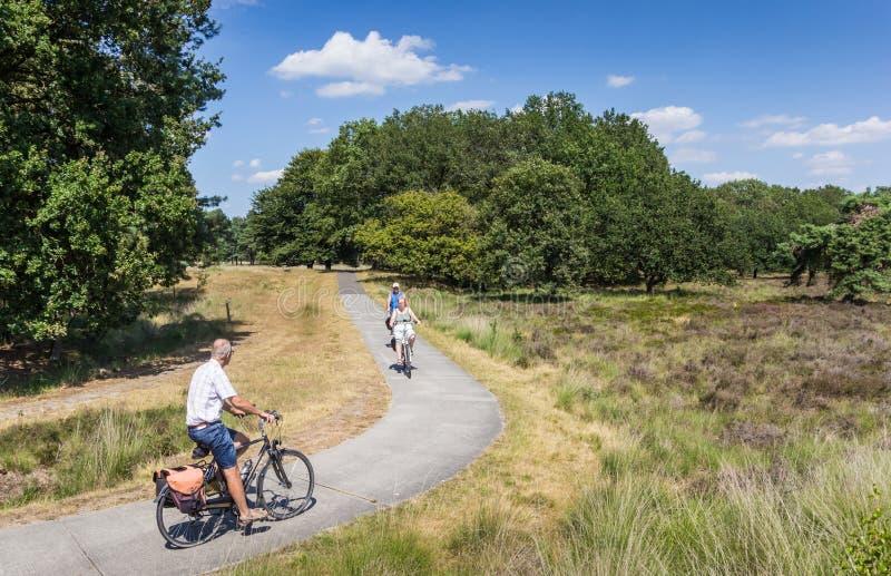 Bicyclettes de monte de personnes en parc national Dwingelderveld photo stock