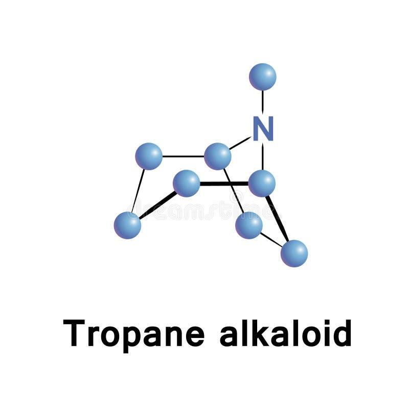 Bicyclic alkaloid för Tropane royaltyfri illustrationer