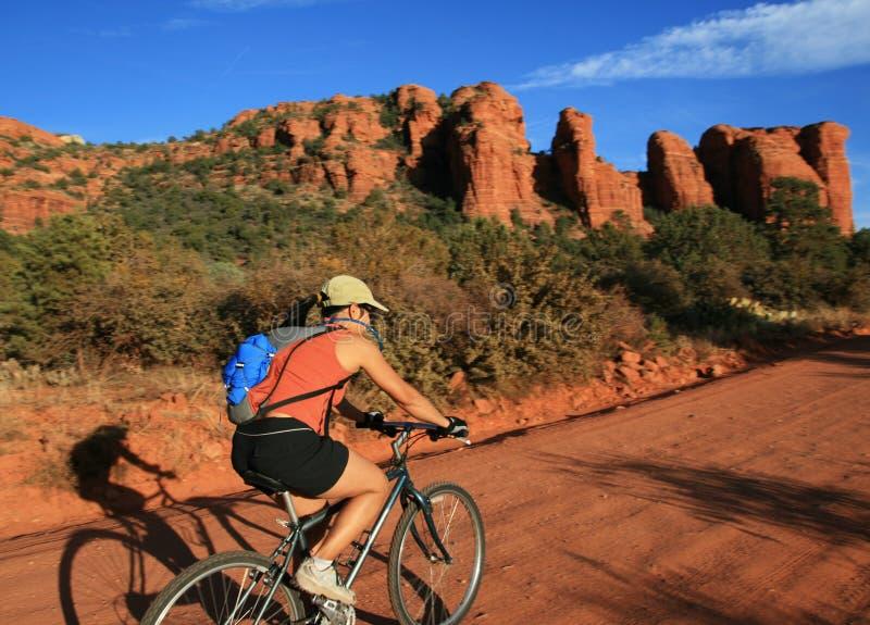 bicycling женщина стоковое изображение