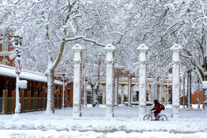 Bicycling através da neve fotografia de stock royalty free