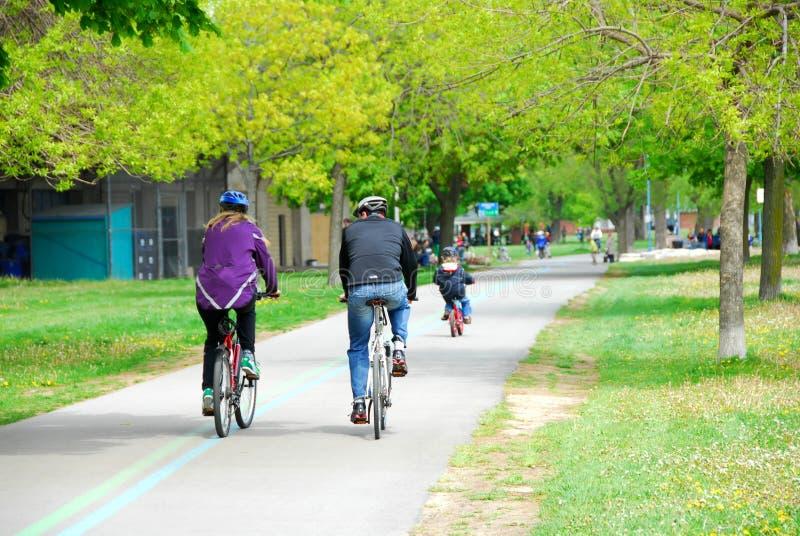 Bicycling in een park stock fotografie