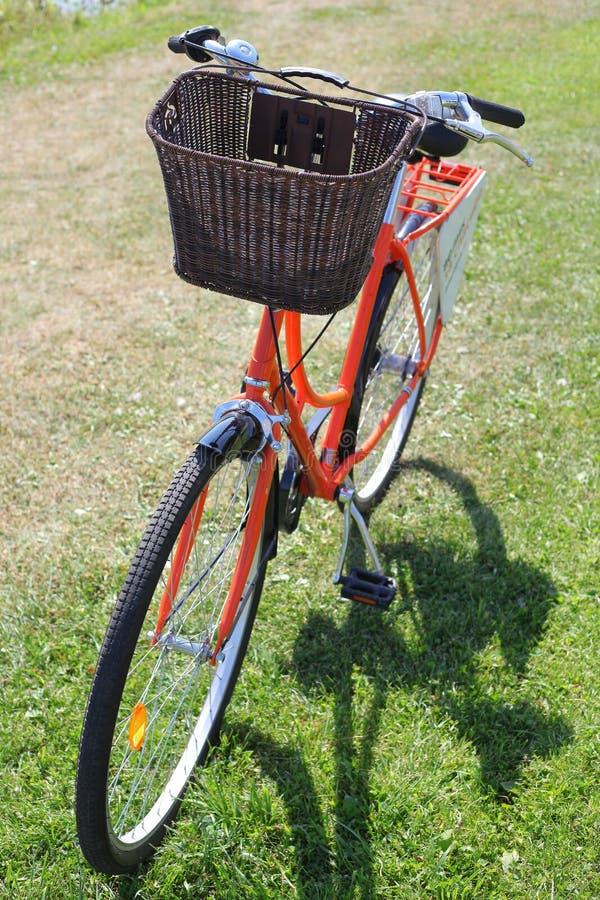 Bicycling no parque foto de stock royalty free