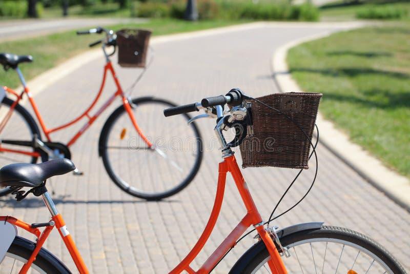 Bicycling no parque fotografia de stock royalty free
