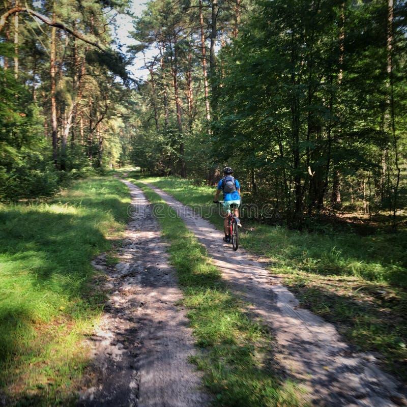 Bicycling no Polônia foto de stock