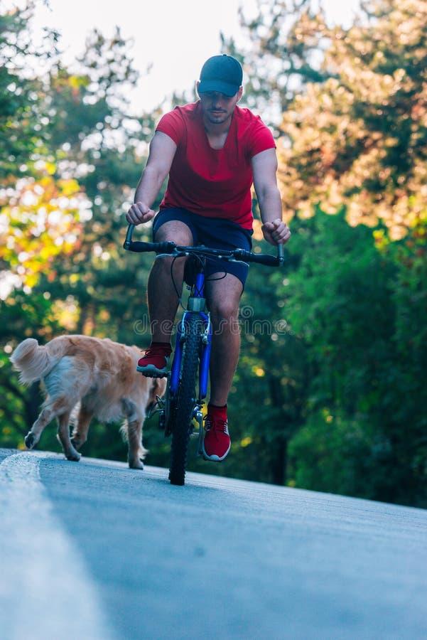 Bicyclist biker rijdt zijn fiets in de natuur terwijl hij vergezeld ging van zijn hond en een gouden rector stock foto