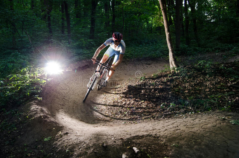 Bicyclist bikes forest stock photography
