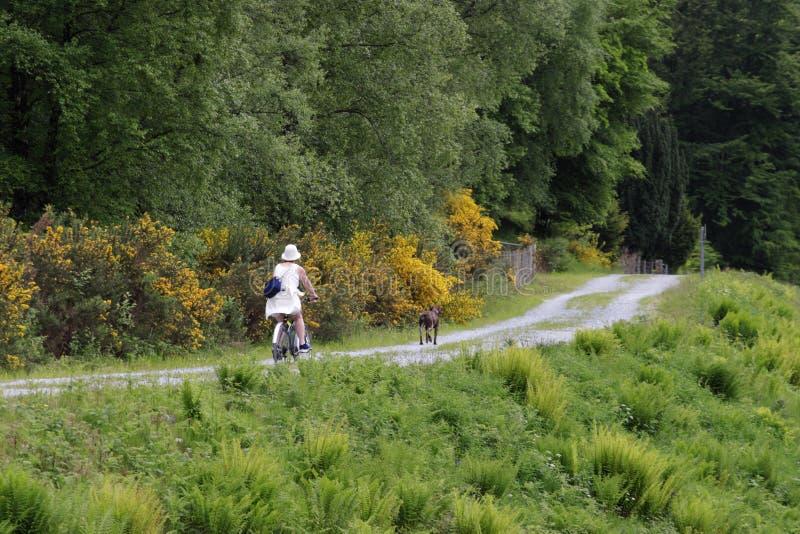 Bicyclist fêmea imagens de stock
