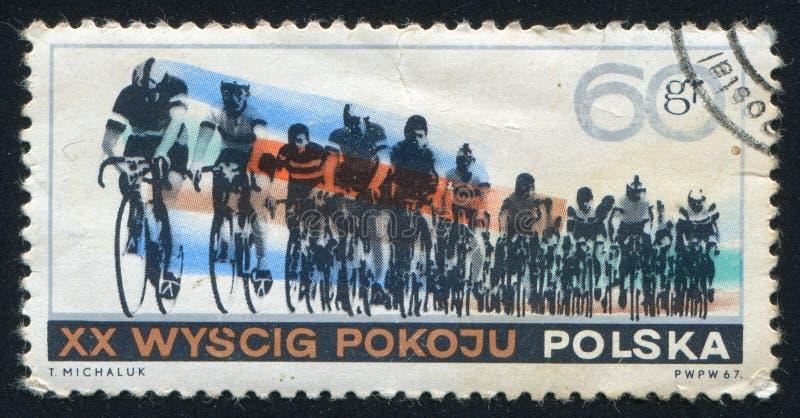 bicyclists imagens de stock