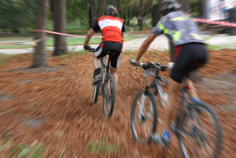 Bicyclists imagem de stock
