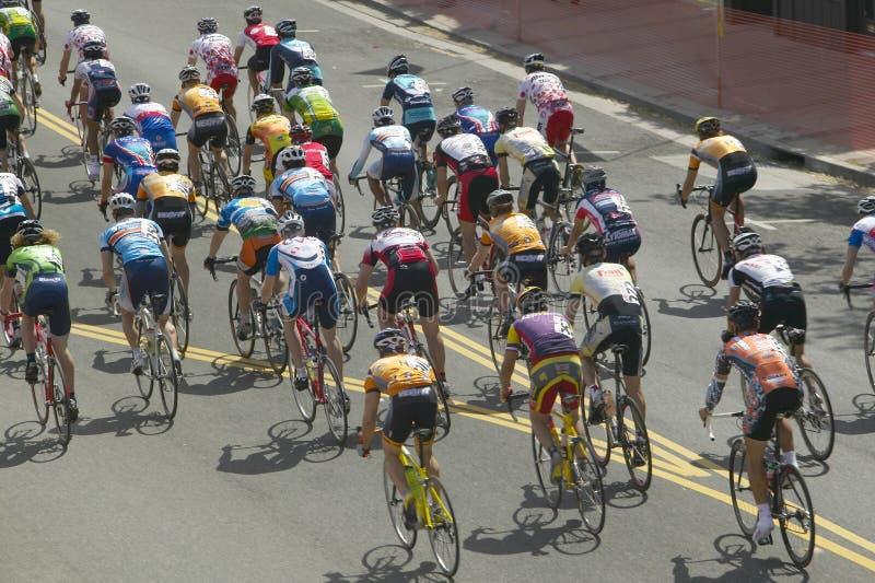 Bicyclists amadores dos homens fotografia de stock royalty free