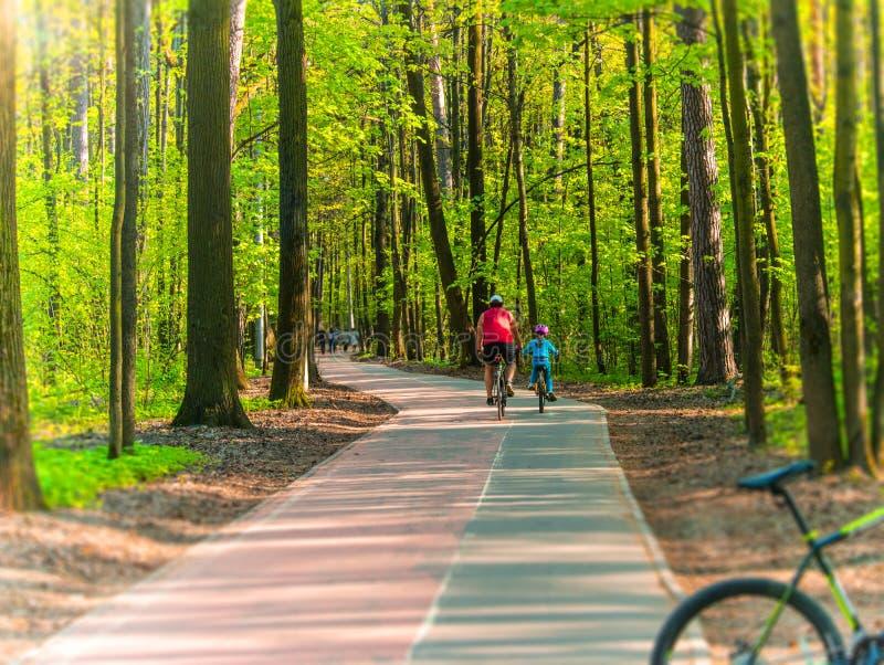 bicyclists fotografia de stock royalty free