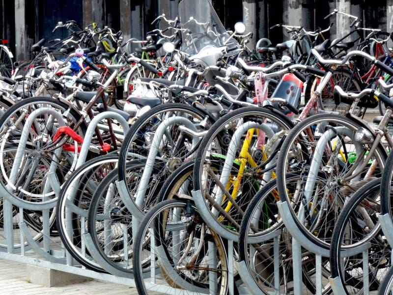 Bicykle parkujący w holandiach zdjęcia royalty free