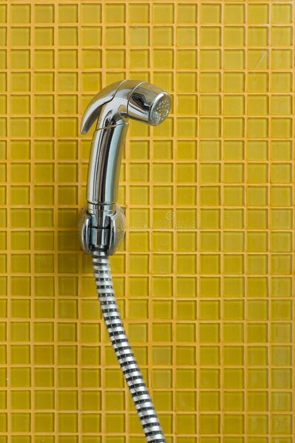 Bidédusch, bidésprej i toalett royaltyfri foto