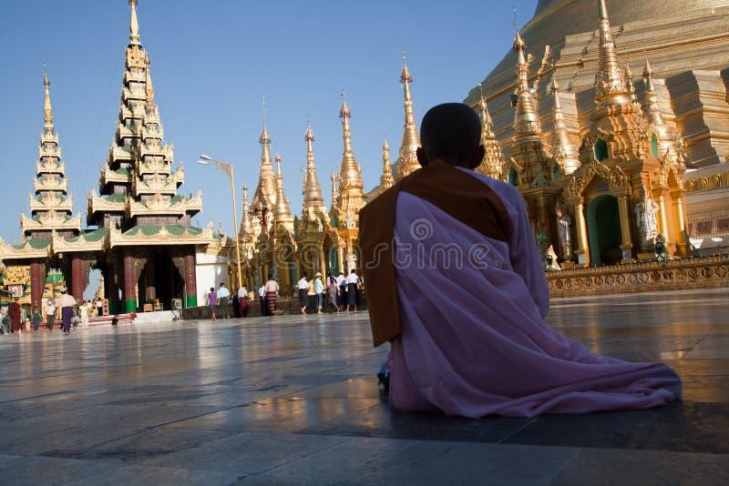 Biddende monnik bij Shwedagon-pagode stock afbeelding