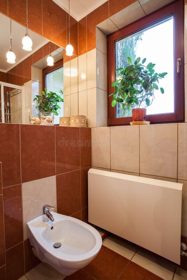 Download Bidet in bathroom stock image. Image of luxury, elegance - 28024967
