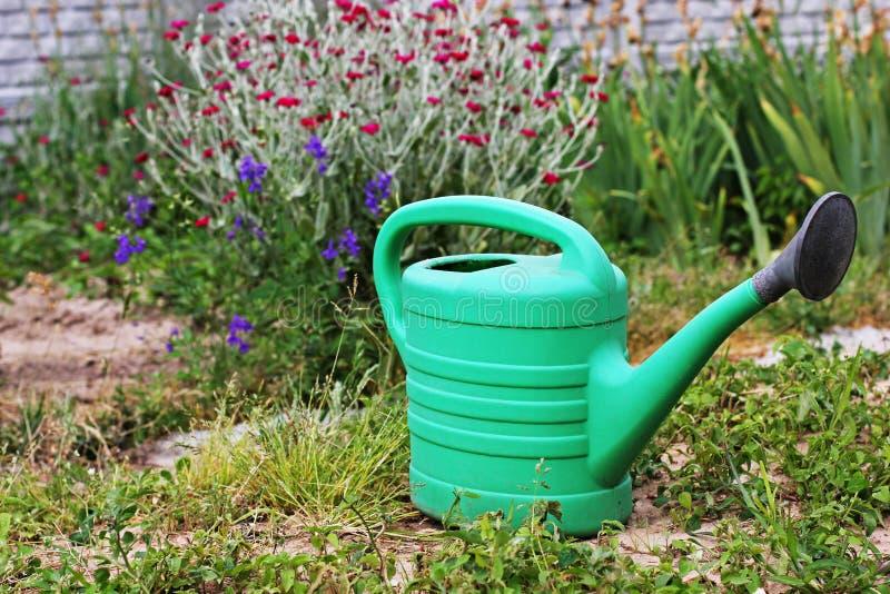 Bidon d'arrosage pour des fleurs Les outils du jardinier photos libres de droits