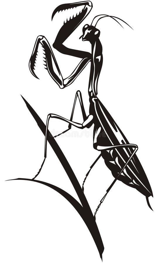 Bidsprinkhanen stock illustratie