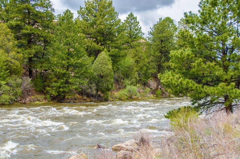 Bieżąca góry woda zdjęcia stock