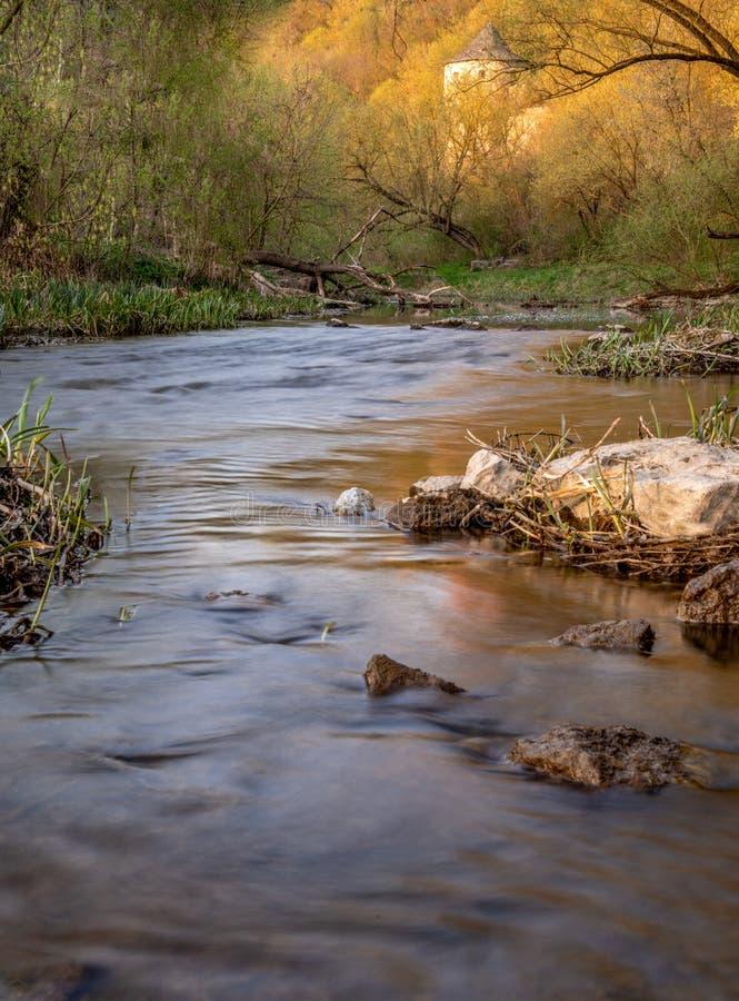 bieżąca rzeka wzdłuż pięknego jaru fotografia royalty free
