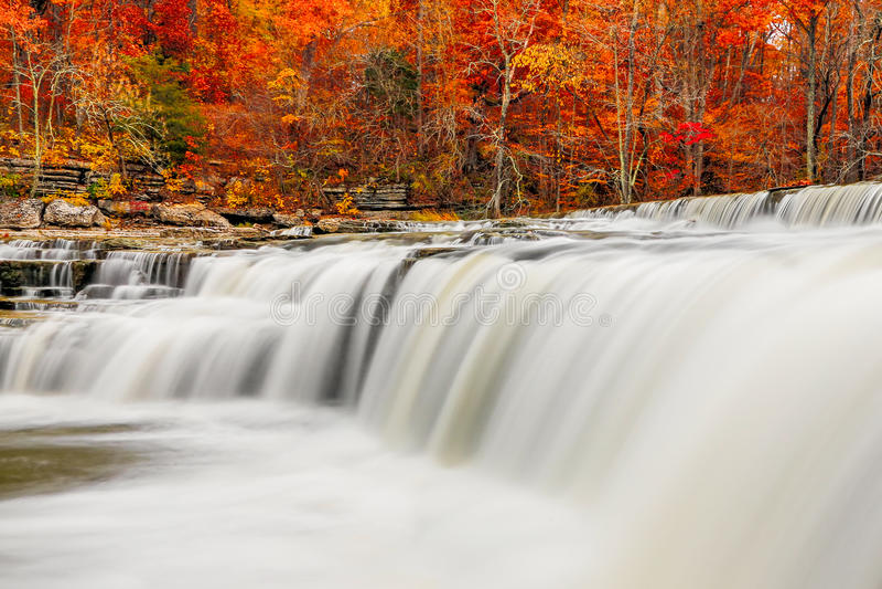 Bieżącej wody i spadku liście obrazy royalty free