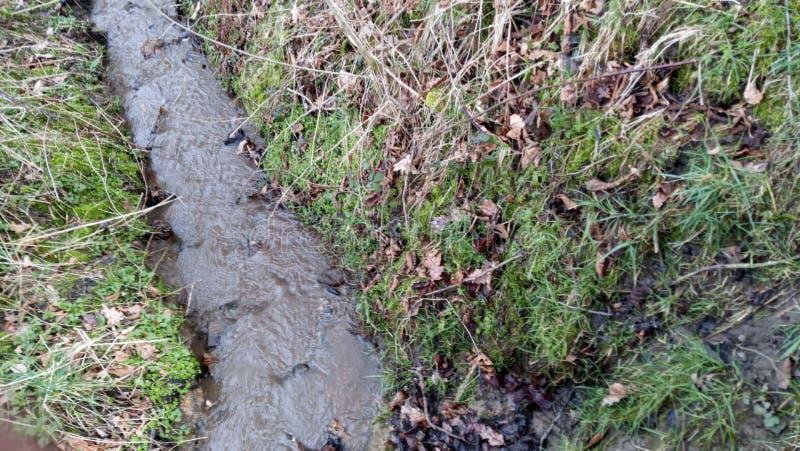 Bieżący strumień przez ziemię zdjęcia stock