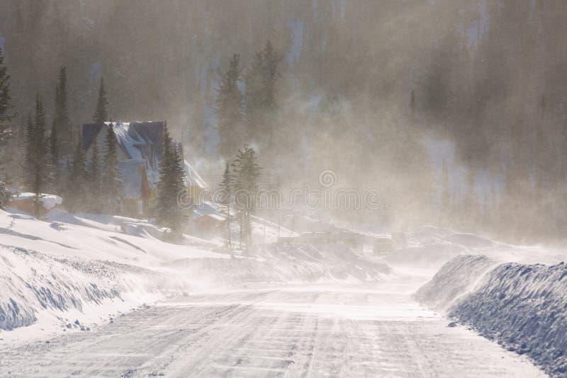 Biedna widoczność z silnymi wiatrami dmucha śnieg wokoło podczas śnieżnej burzy w przedmieścia fotografia stock