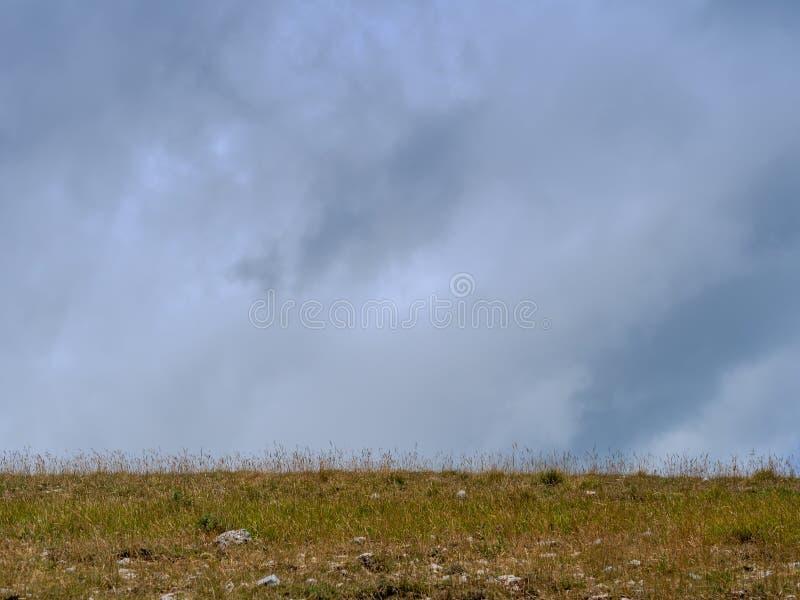 Biedna ziemia, popielaty niebo Trawy łąki horyzont fotografia royalty free