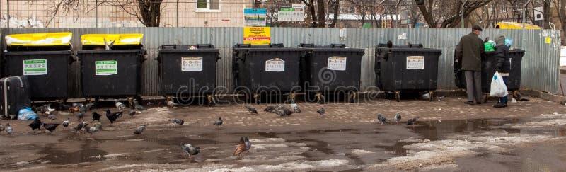 Biedni ludzie bezdomni zbierają butelki blisko kubeł na śmieci fotografia royalty free