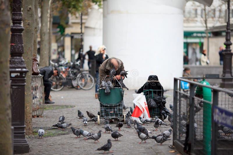 biednych człowieków żywieniowi gołębie w ulicie zdjęcia stock