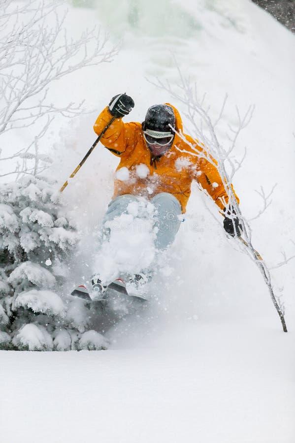 Biegły narciarki narciarstwa proszka śnieg w Stowe, Vermont, zdjęcia stock
