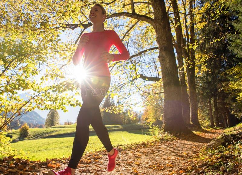 Biegać przez jesień lasu obraz stock