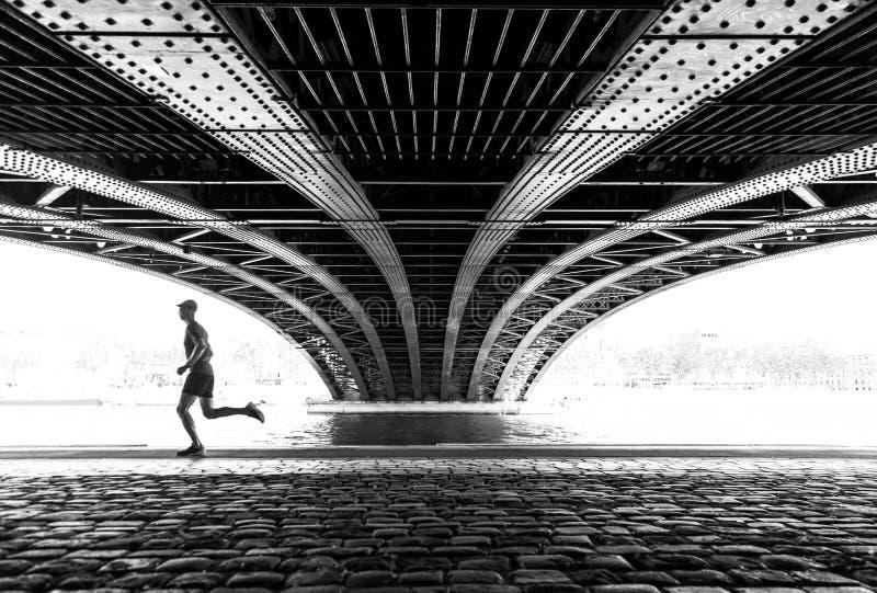 Biegać w Lion zdjęcia stock