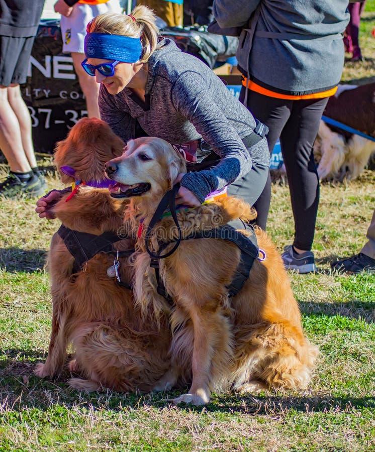 Biegacze i zwierzęta domowe Dostaje Gotowy dla Rocznego Roanoke doliny SPCA 5K ogonu łowcy fotografia royalty free