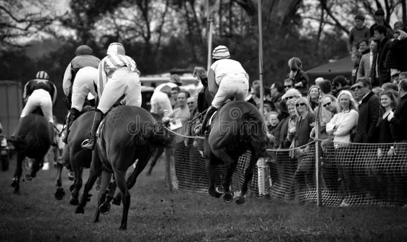 Biegowi konie - dopatrywanie tłoczy się obraz stock