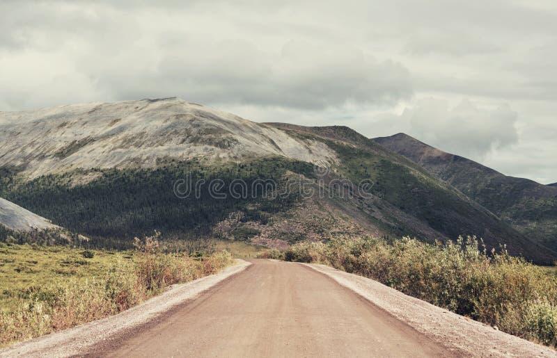 Biegunowa tundra zdjęcie royalty free