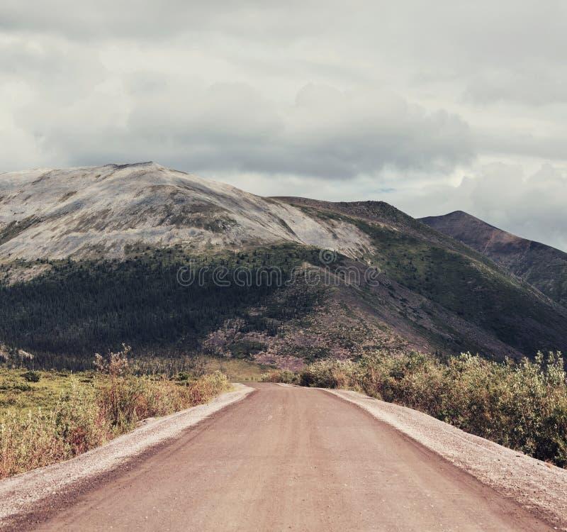 Biegunowa tundra obrazy stock