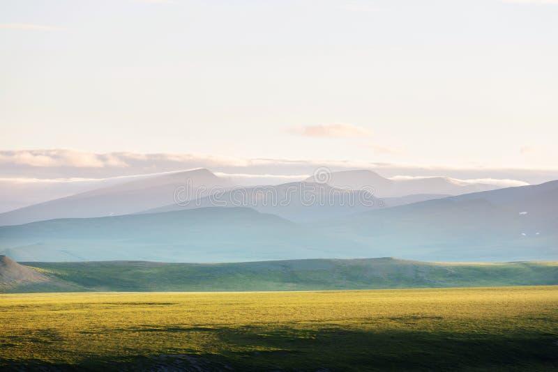 Biegunowa tundra zdjęcia royalty free