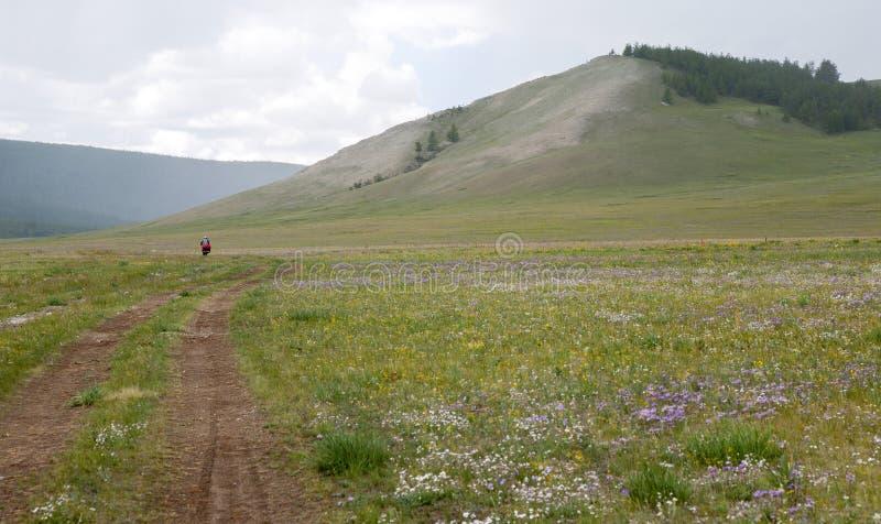 Biek Voyageant En Mongolie Du Nord Image stock