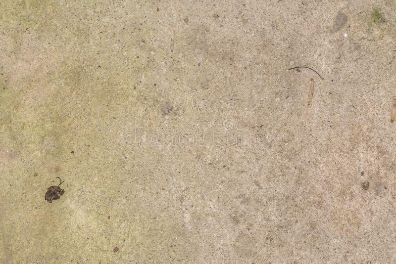 Biel brudny i plamy tła betonowy cement textured fotografia royalty free