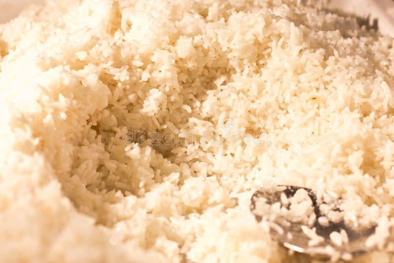 Biel dłudzy gotowani ryż z srebną szpachelką zdjęcia royalty free
