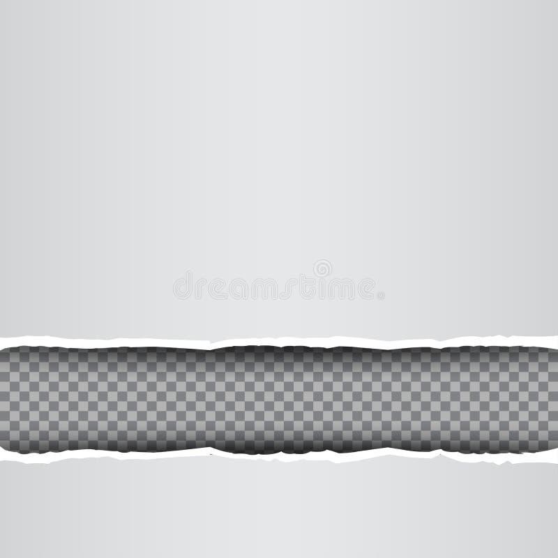 Biel drzejący papierowy przejrzysty tło royalty ilustracja
