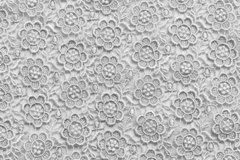 Biel koronka z małymi kwiatami Żadny jakaś znak firmowy lub ogranicza sprawę w ten fotografii fotografia royalty free