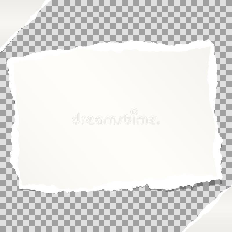 Biel notatka, notatnik, copybook papier wtykający na popielatym ciosowym tle royalty ilustracja