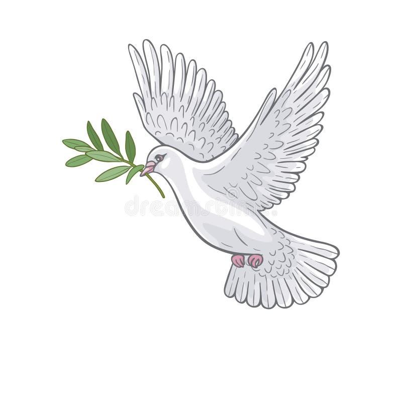 Biel nurkujący z gałązką oliwną royalty ilustracja