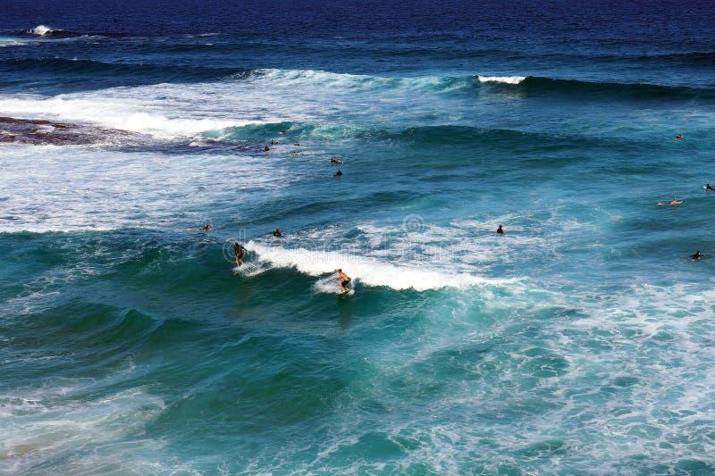 Biel Pienić się Pacyficznego oceanu fala zdjęcia royalty free