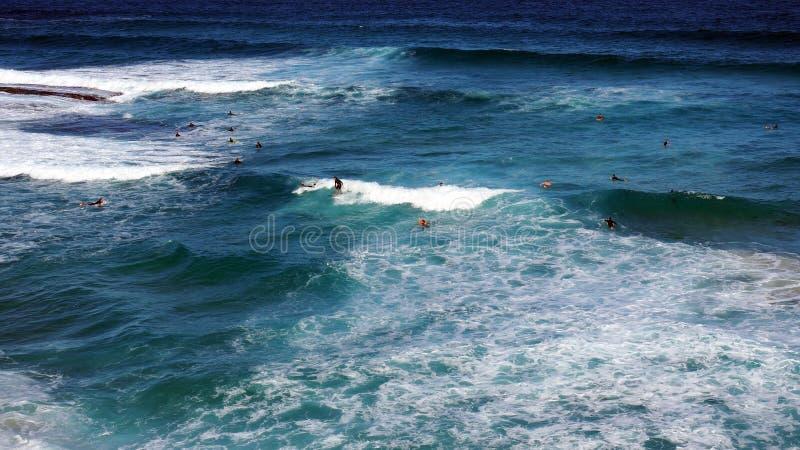 Biel Pienić się Pacyficznego oceanu fala zdjęcie royalty free